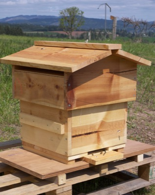 introduction warre hive construction guide the bee space rh thebeespace net Bee Hive Dimensions Bee Hive Dimensions