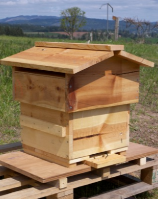 Completed Warre Hive - Linseed Oil Finish