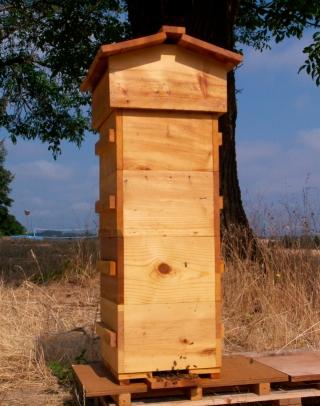Tall Warre Hive