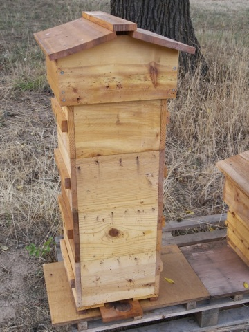 Warre Hive Ready for Harvesting