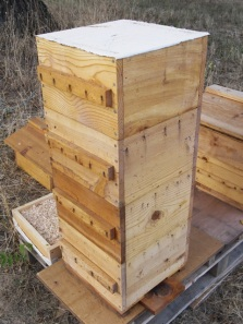 Warre Hive with Quilt Removed