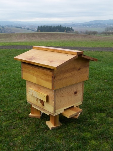 Completed and Installed Warre Hive