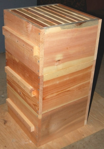 Warre Hive Boxes Stacked and Ready to Paint