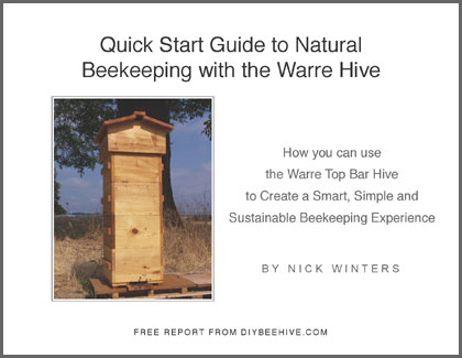 best dezignito: More Best top bar beehive plans